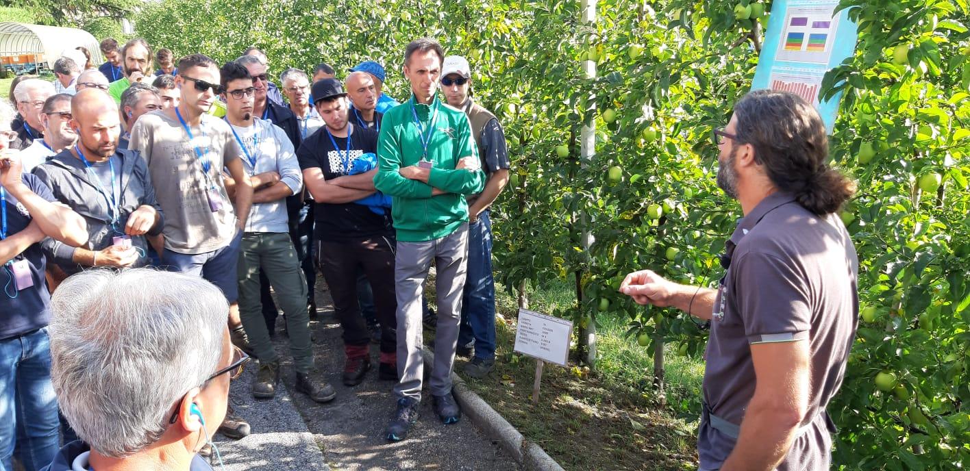 Grande partecipazione di frutticoltori oggi a Cles all'incontro dedicato alla frutticoltura di montagna