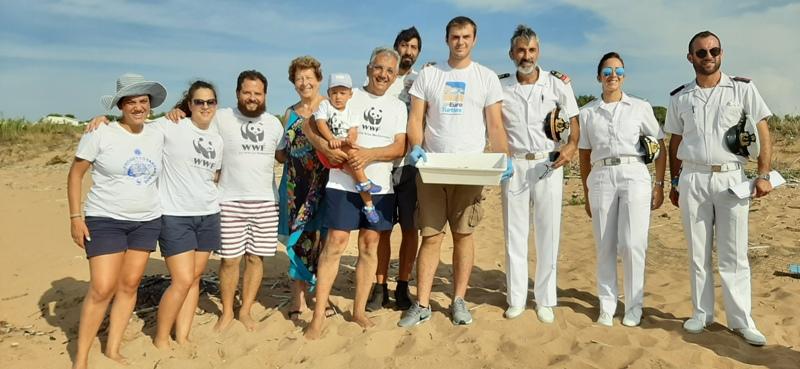 WWF – 82 tartarughine Caretta caretta nascono a Selinunte Castelvetrano sotto la protezione degli dèi