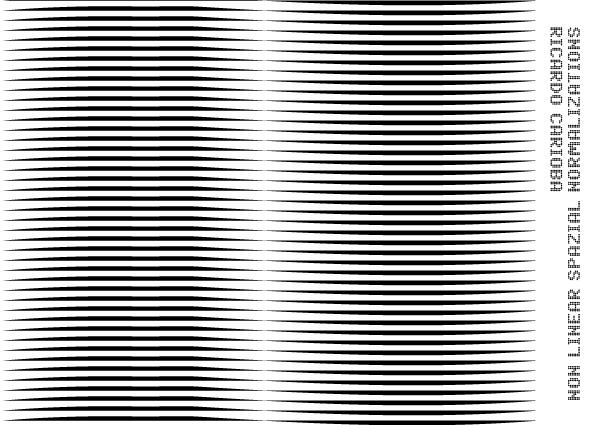 FUTURDOME   RICARDO CARIOBA. Non Linear Spatial Normalizations