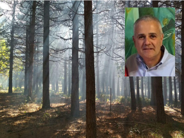 Solite parole e promesse per i Forestali. I fatti restano legati alle minime giornate lavorative