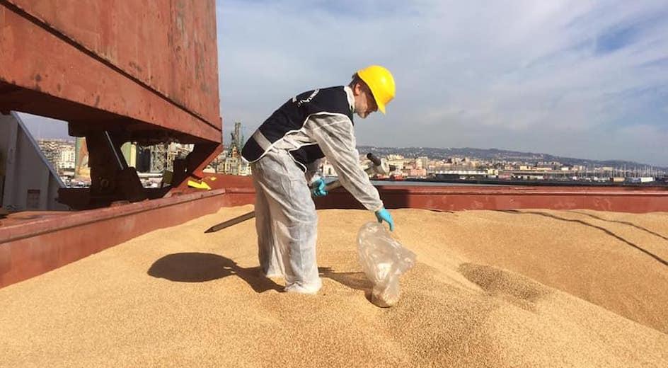 """Nave carica di grano al Porto di Pozzallo. Corrao (M5S): """"Ci risiamo, il mercato cerealicolo siciliano è in ginocchio"""""""