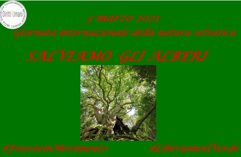 3 marzo. Giornata mondiale della natura selvatica 2021: riflessioni e proposte didattiche.