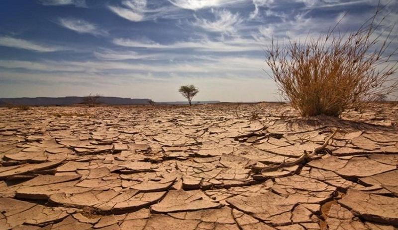 17 giugno. Giornata Mondiale per la Lotta alla Desertificazione e alla Siccità 2021