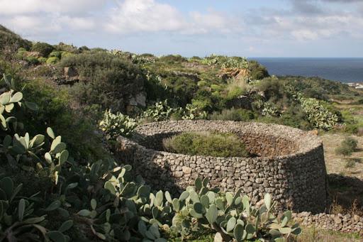 Pantelleria, gli itinerari dei giardini panteschi e il vademecum per replicare un giardino di questo tipo. I risultati del nuovo intervento realizzato da Legambiente e Gruppo Unipol